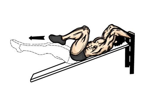 illustrated list of weight training techniques