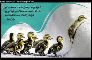 Sathguru Quotes And Sayings In Tamil (With Pictures ...