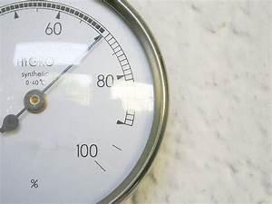 Luftfeuchtigkeit In Räumen Senken : hohe luftfeuchtigkeit senken majas pflanzenwelt ~ Orissabook.com Haus und Dekorationen