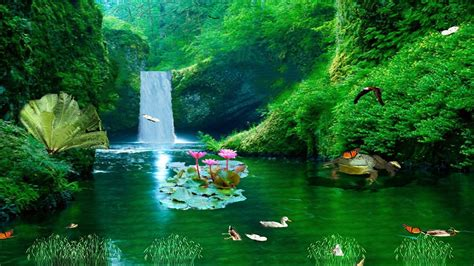 zealand waterfall