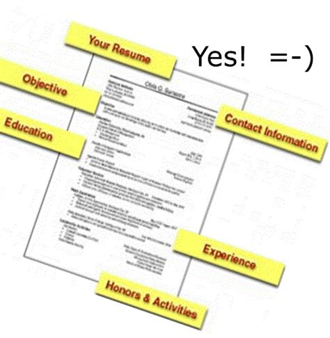 the elements of a professional and accurate resume resume cv