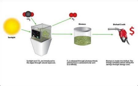 Изготовление бензина и дизтоплива в домашних условиях . полезное своими руками