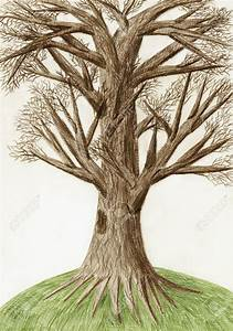 Photos: Colored Pencil Drawings Of Trees, - DRAWING ART ...