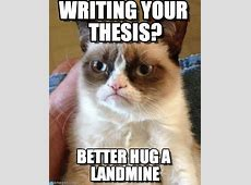 Writing Your Thesis? Grumpy Cat meme on Memegen