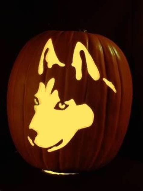 husky jack  latern husky love pinterest carving