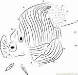 Angelfish Royal Dots Connect Dot Coloring Pages sketch template