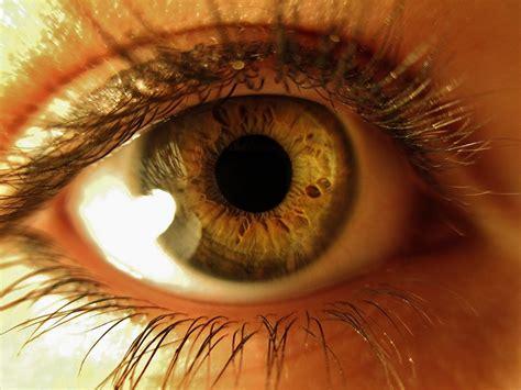 Anime Eye Close Up Close Up Eyes Www Imgkid Com The Image Kid Has It