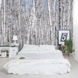 papier peint 4 murs chambre white birch trees wall mural