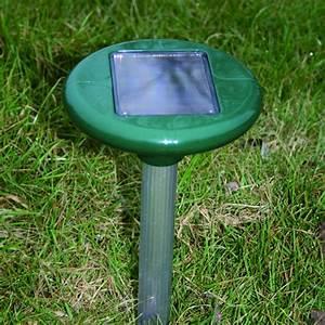 Produit Anti Taupe : anti taupe solaire triangle outillage ~ Premium-room.com Idées de Décoration