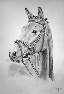 Bild Malen Lassen : pferd zeichnen lassen auftragsmalerei ~ Orissabook.com Haus und Dekorationen