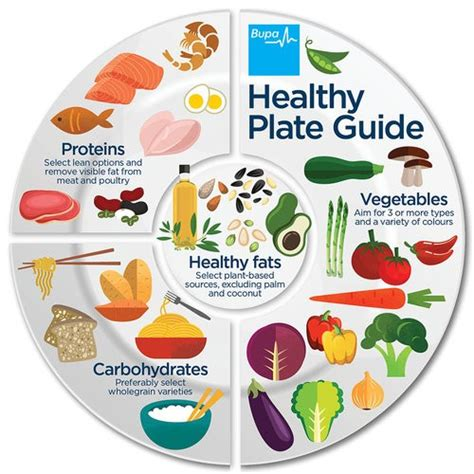 Diagram Of Healthy Plate by Healthy Meal Plate Model Infostreem