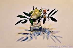 Wie Oft Blumen Gießen : blumendekorationen zum geburtstagsfest zur hochzeit oder weihnachtliche dekoration blumen mit ~ Orissabook.com Haus und Dekorationen