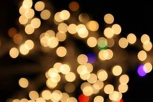 Blurred Christmas Lights White Picture   Free Photograph ...
