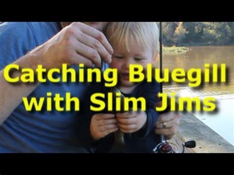 bluegill bait slim jims catch tons  bream youtube