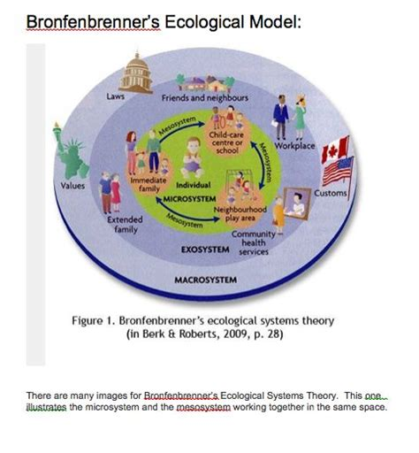 Bronfenbrenner Theory Essay by Write My Ecological Systems Theory Essay