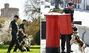 Royal Wedding security: Police on alert for Meghan and ...