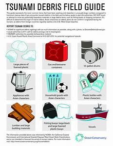 Tsunami Debris Field Guide