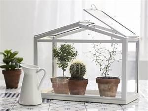 Mini Serre D Intérieur : terrariums d couvrez ces mini serres ultra d co ~ Dailycaller-alerts.com Idées de Décoration