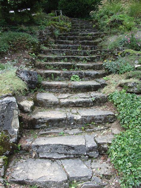 Filebielefeld Botanischer Garten Treppejpg Wikimedia