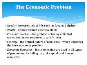The economic problems