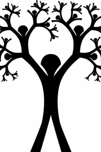 Genealogy Lunch Tree Google Scholar Discuss Demonstration