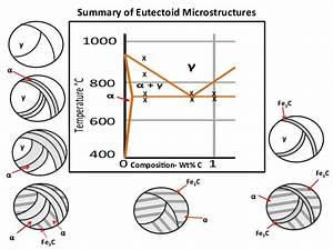 Mseasuslides  Muddiest Point  Phase Diagrams V Fe