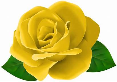 Yellow Rose Clipart Flower Leaves Roses Yopriceville