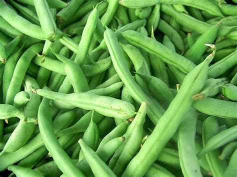 what to do with fresh green beans can you freeze fresh green beans how to freeze your favourite food