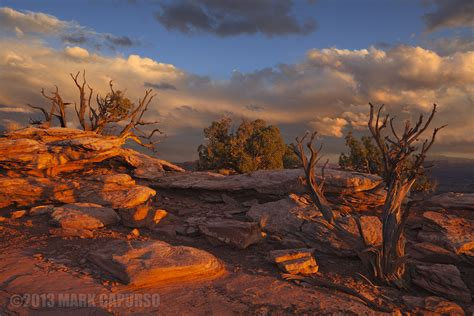 south west landscape top 28 south west landscape before the bloom the american southwest landscape photography
