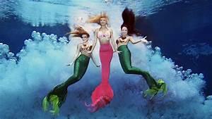Florida Travel  See Real Mermaids At Weeki Wachee Springs