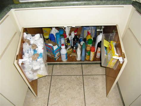 kitchen sink storage ideas the kitchen sink bag storage bigdiyideas com