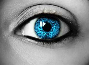 Beautiful Pictures Of Eyes  25 Pics