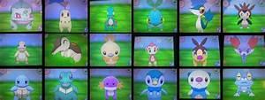 Pokemon X Shiny Starter Pokemon Images | Pokemon Images