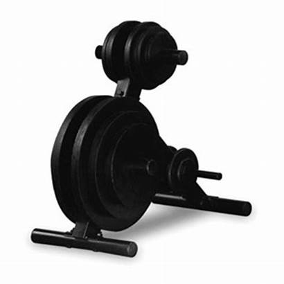Weight Solid Tree Olympic Plate Trees Load