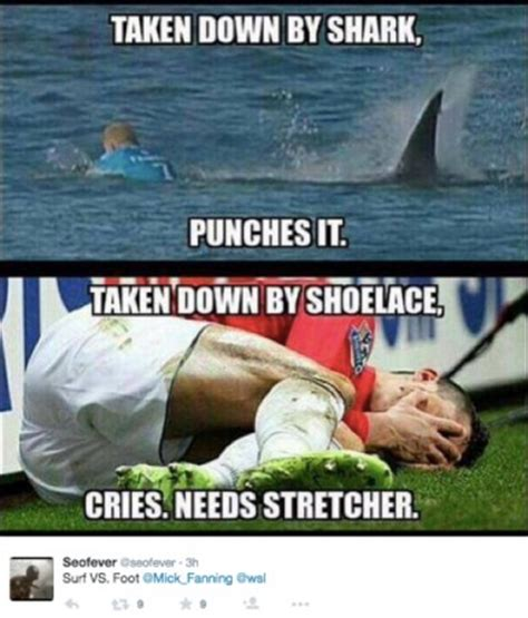 Shark Memes - the 18 best mick fanning shark memes all in one place the inertia