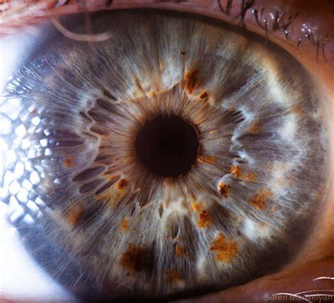 human eye  youve      blow