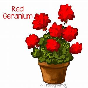 Red Geranium in Pot Original art download 2 files geranium