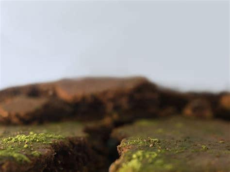 miniature tilt shift landscapes   food  wool