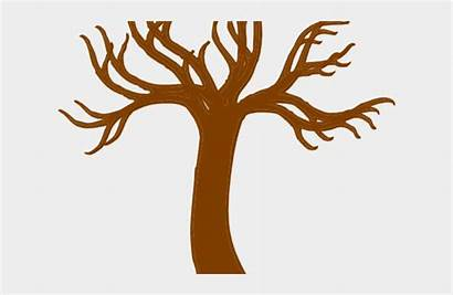 Trunk Tree Clipart Roots Branch Jing Fm