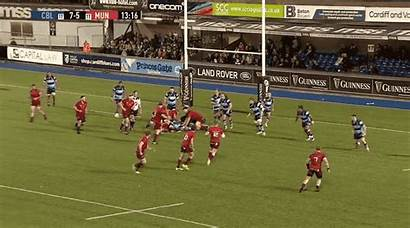 Cardiff Wally Munster Ratings Acceleration Incisive Would