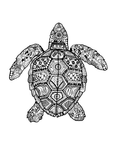 turtle zentangle drawing  smondesigns su etsy