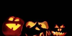 Halloween Deko Für Draussen : halloween deko f r drau en die haust r und den garten ~ Frokenaadalensverden.com Haus und Dekorationen