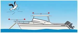 Gullsweep U00ae Bird Deterrent For Boats