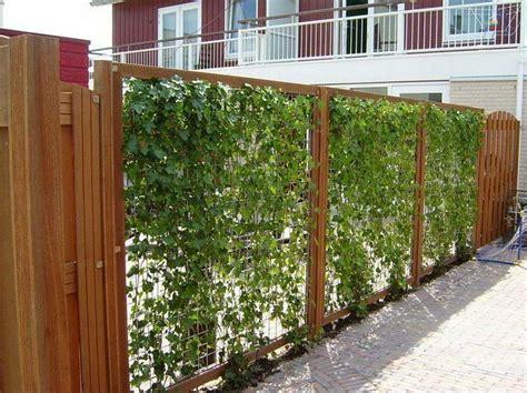 Zaun Aus Baustahlmatten by Gartenzaun Begr 252 Nen Alles Rund Um Den Garten