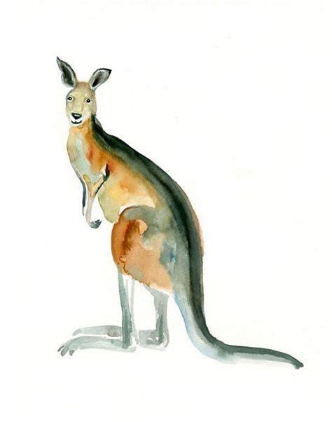 kangaroo words  art kangaroo illustration kangaroo