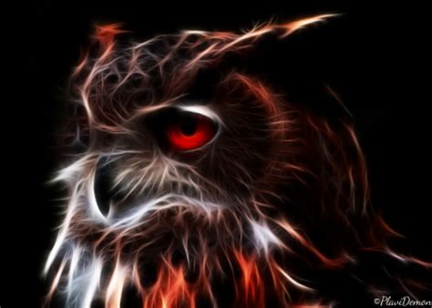 Glowing Animal Wallpaper - glowing owl other animals background wallpapers on