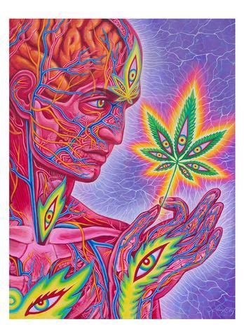 featured cosm shop