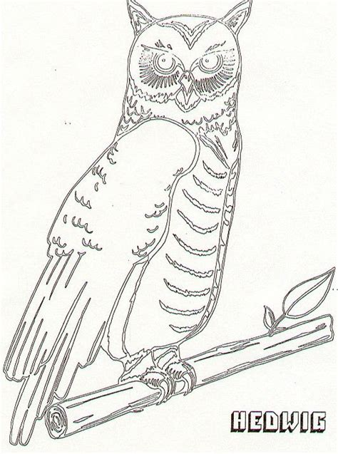 images  harry potter coloring pages