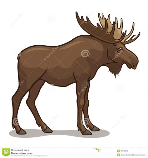 Moose Stock Vector Illustration Of Brown Wild Cartoon