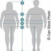 Maße Berechnen Frau : koerper ma e diagramm tabelle weibliche ma mann ~ Haus.voiturepedia.club Haus und Dekorationen